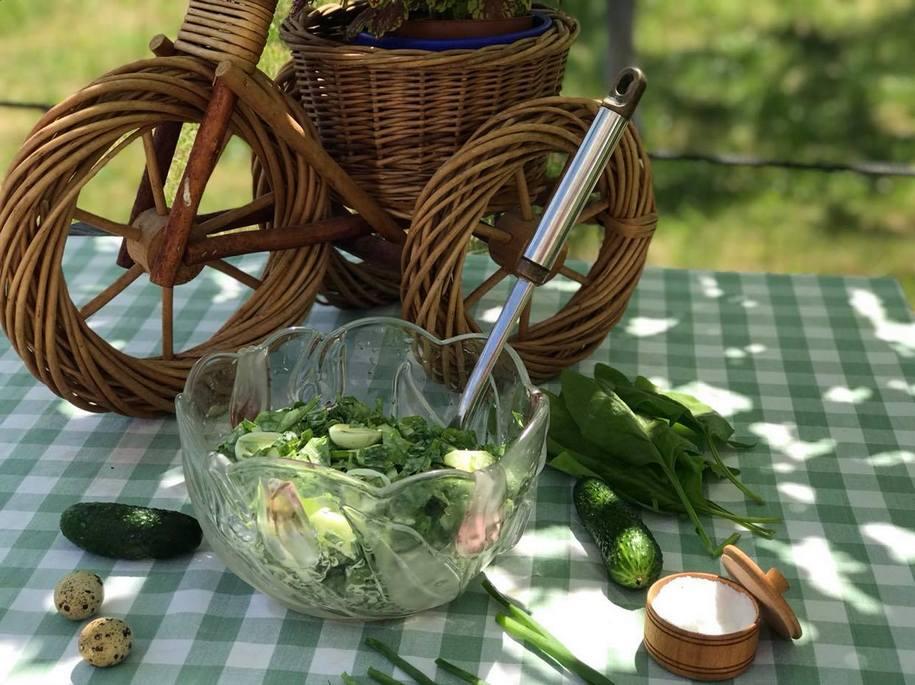 Салат зі шпинату з яйцем і огірком