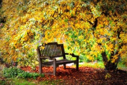 Посівний календар на жовтень 2021 городника і садівника